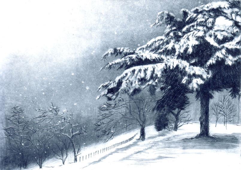 'Winter Firs'