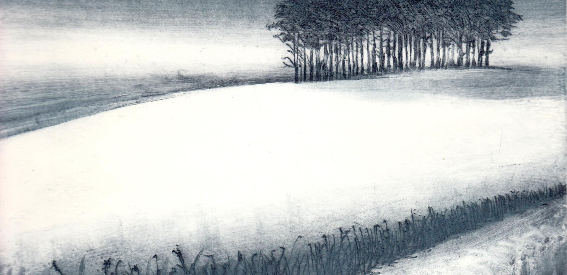 'Winter Copse'