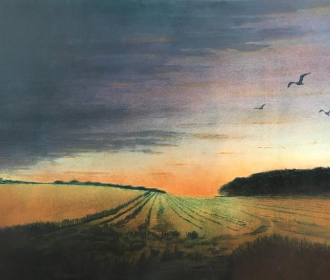 'Late HarvestNo.2'