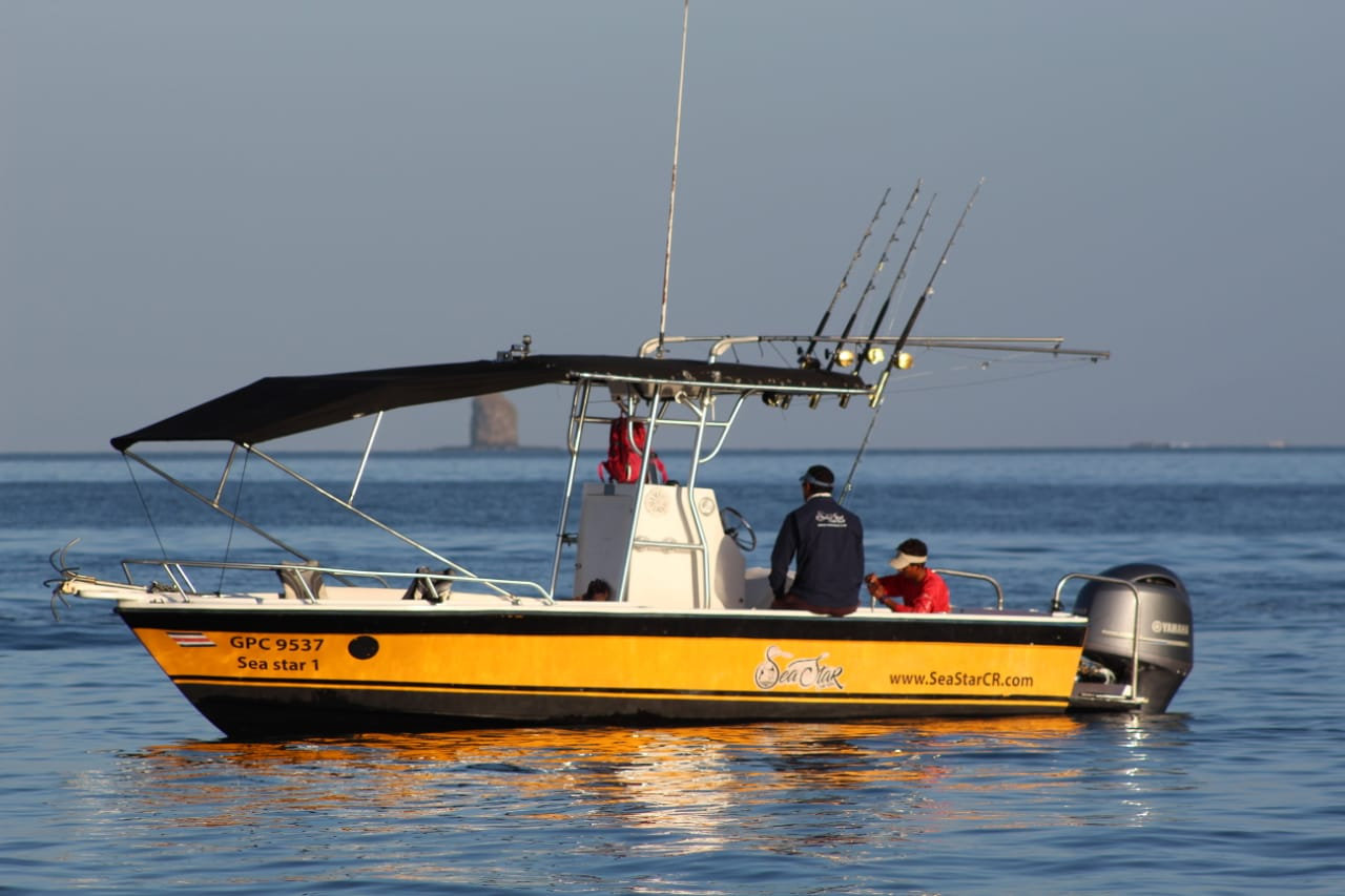Full Day Sea Star I Sportfishing