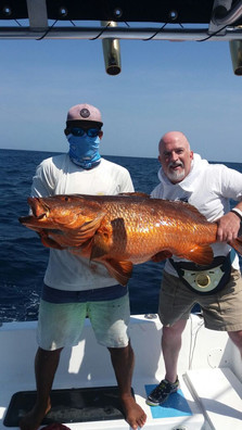 Cubera Snapper off Peninsula Papagayo