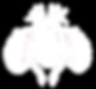 ostéopathe mandelieu