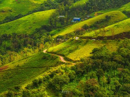 Serenely Yours, Chikmagalur
