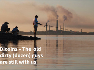 Dioxin problems Unsolved –  The old dirty dozen is more than ever alive..