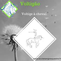 voltigao Voltige
