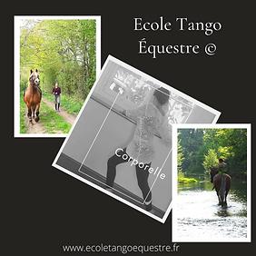 Ecole tango equestre mouvement corporel