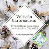 Carte cadeau voltigao
