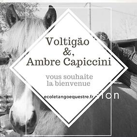 Bienvenue Voltigao et Ambre Capiccini