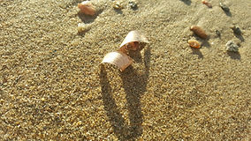 Ambre Capiccini- sable et mouvement.jpg