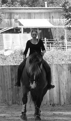 art cheval ambre capiccini
