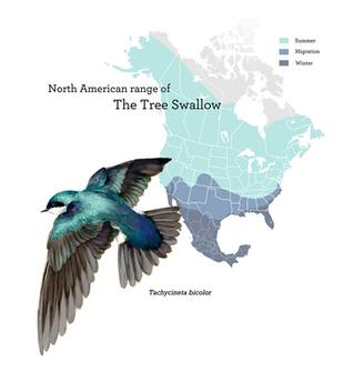 Range of the Tree Swallow