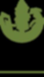 SC-North-Star_Logo.png
