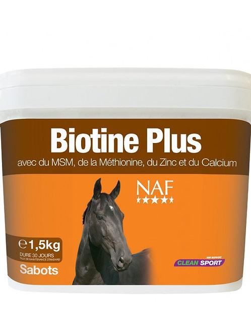 NAF- Biotine