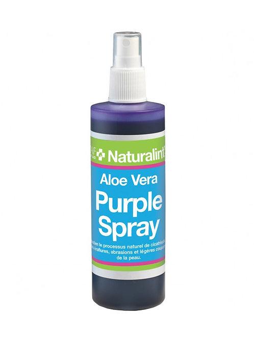 NATURALINTX Aloe Vera Spray