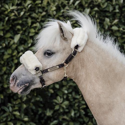 Licol Cuir /Mouton Pony