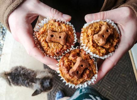Cupcakes for Puppies - Recipe