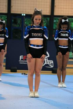 Finale FFFA 2017 Tigers 71