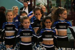 Finale FFFA 2017 Tigers 1