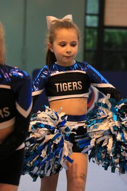 Finale FFFA 2017 Tigers 15