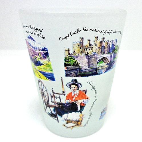 Welsh Themed Shot Glasses from Teme Trinkets