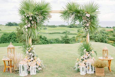 Royal Isabela - Wedding - Puerto Rico -