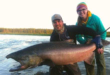 King Salmon Fly fishing Kenai River Alaska