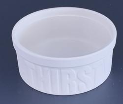 Thirsty Dog Water Bowl