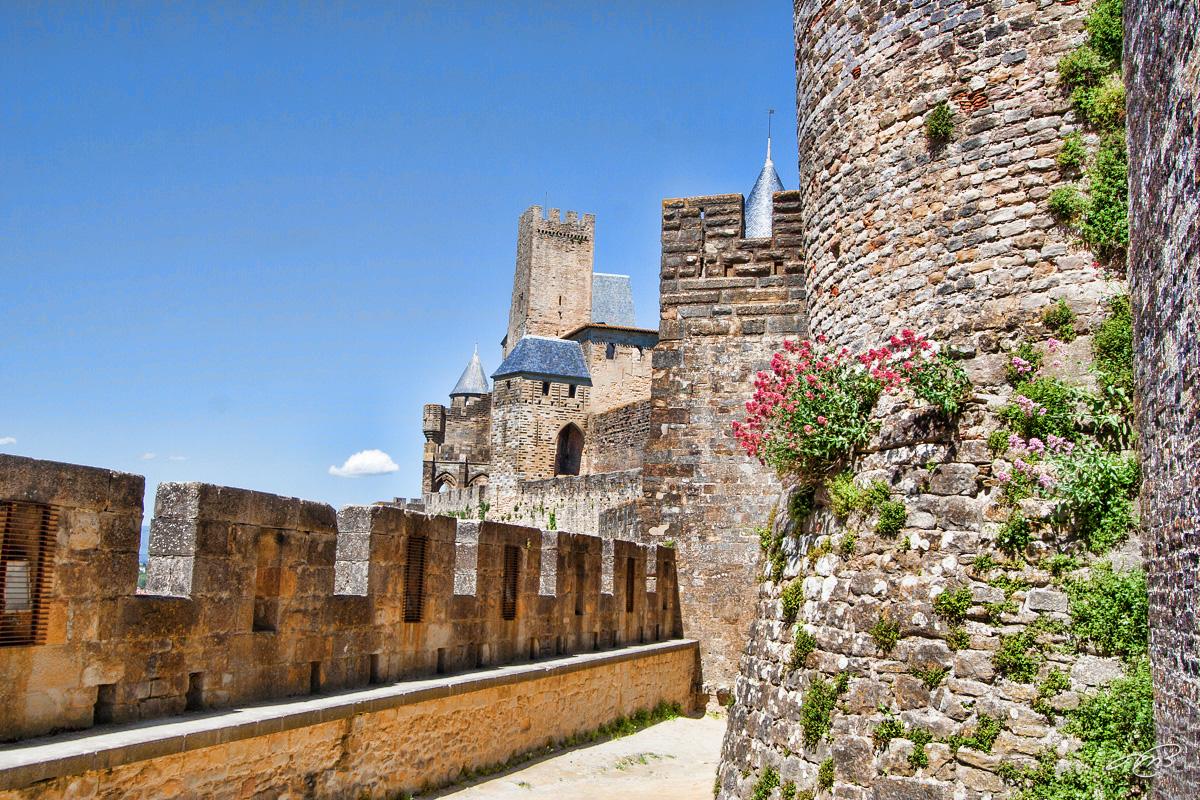 carcassonne IMG_8303.jpg
