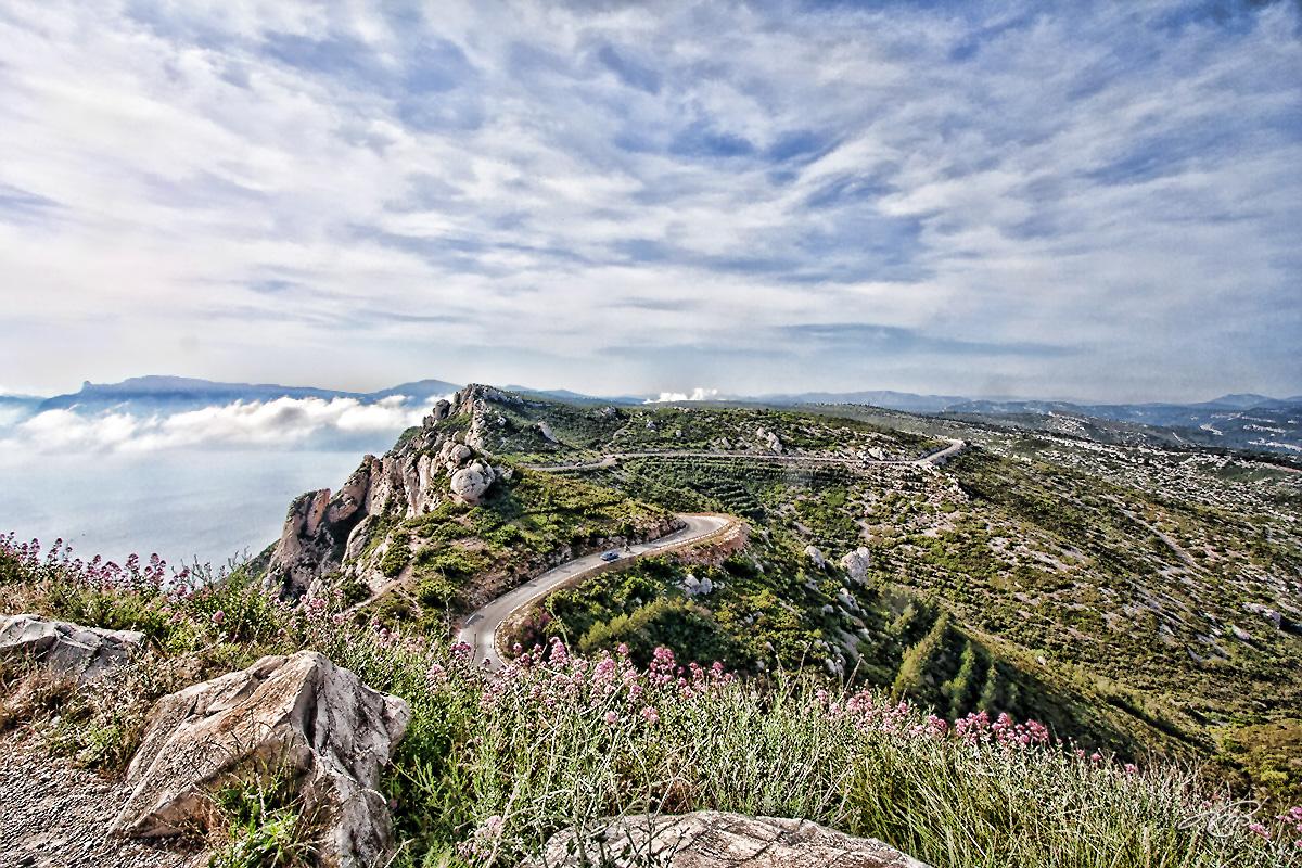 Provence IMG_8564.jpg