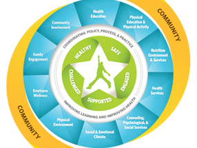 Whole School, Whole Community, Whole Child: A Holistic, Adaptable and Contextual Approach to Health