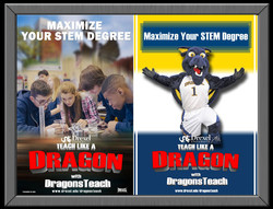 dragonsteach2.jpg