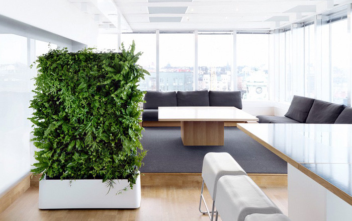 The Benefits of Indoor Gardens and Why You Need the Right Windows