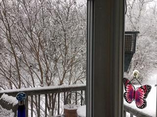 Winter's Creative Juices