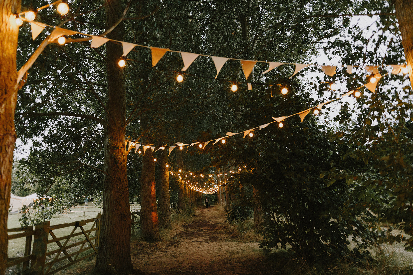 Tree lined walkway with bunting