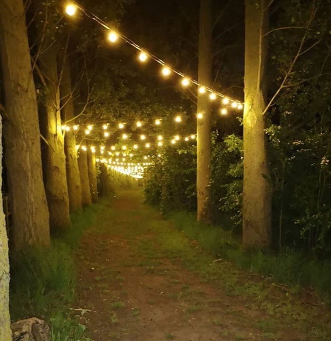 Festoon lighting walkway