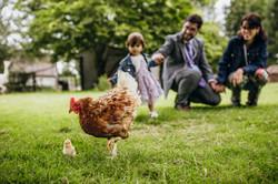 Wedding guests at farm