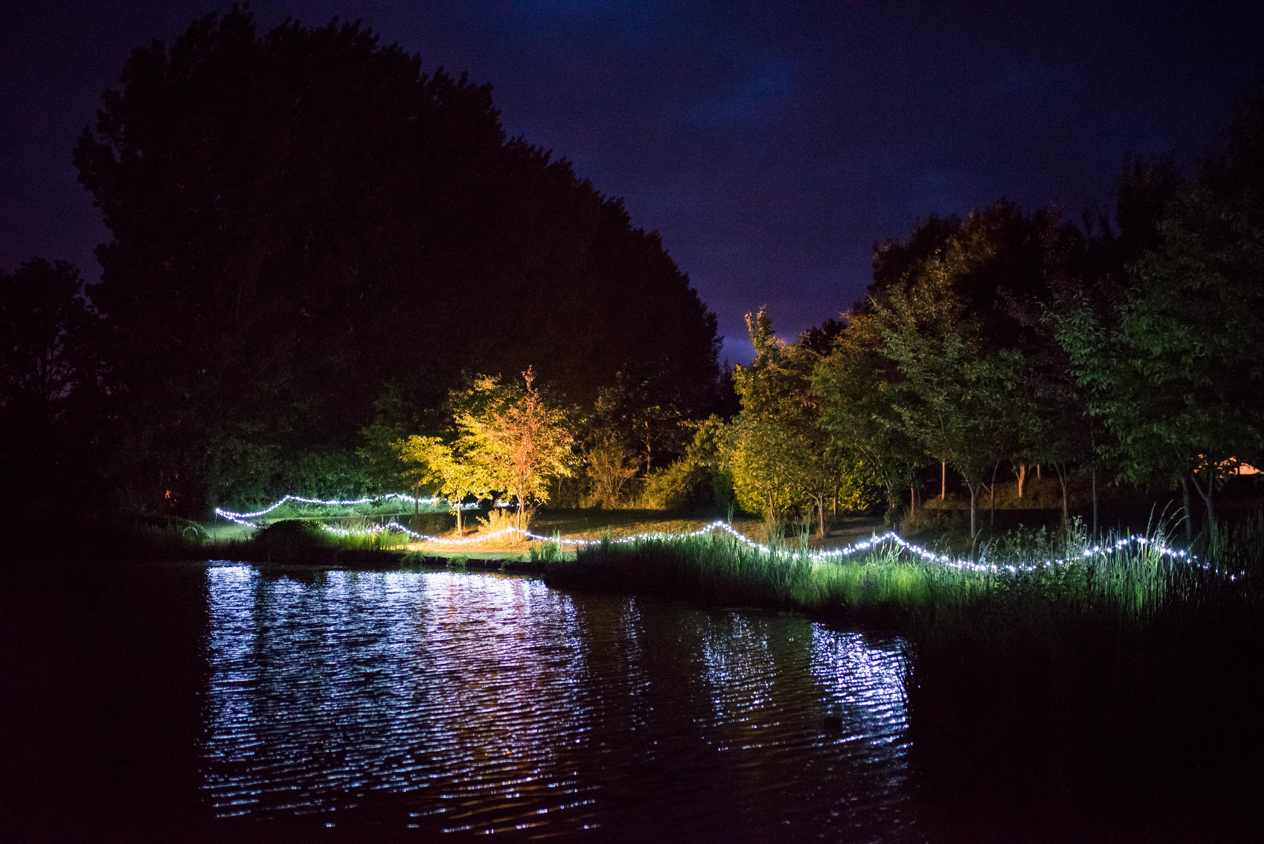 Fairy Lights Around the Lake