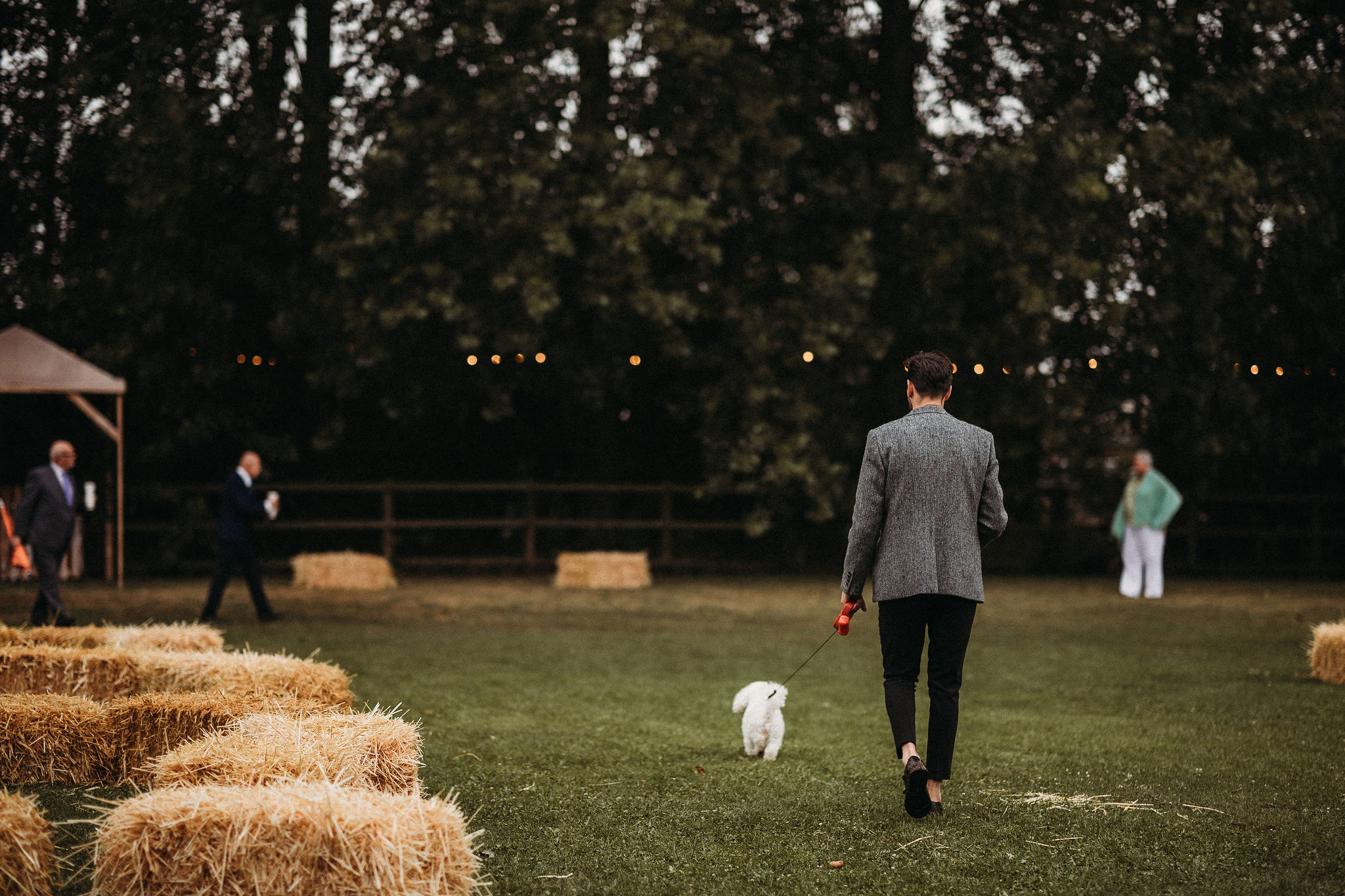 Groom walking the dog