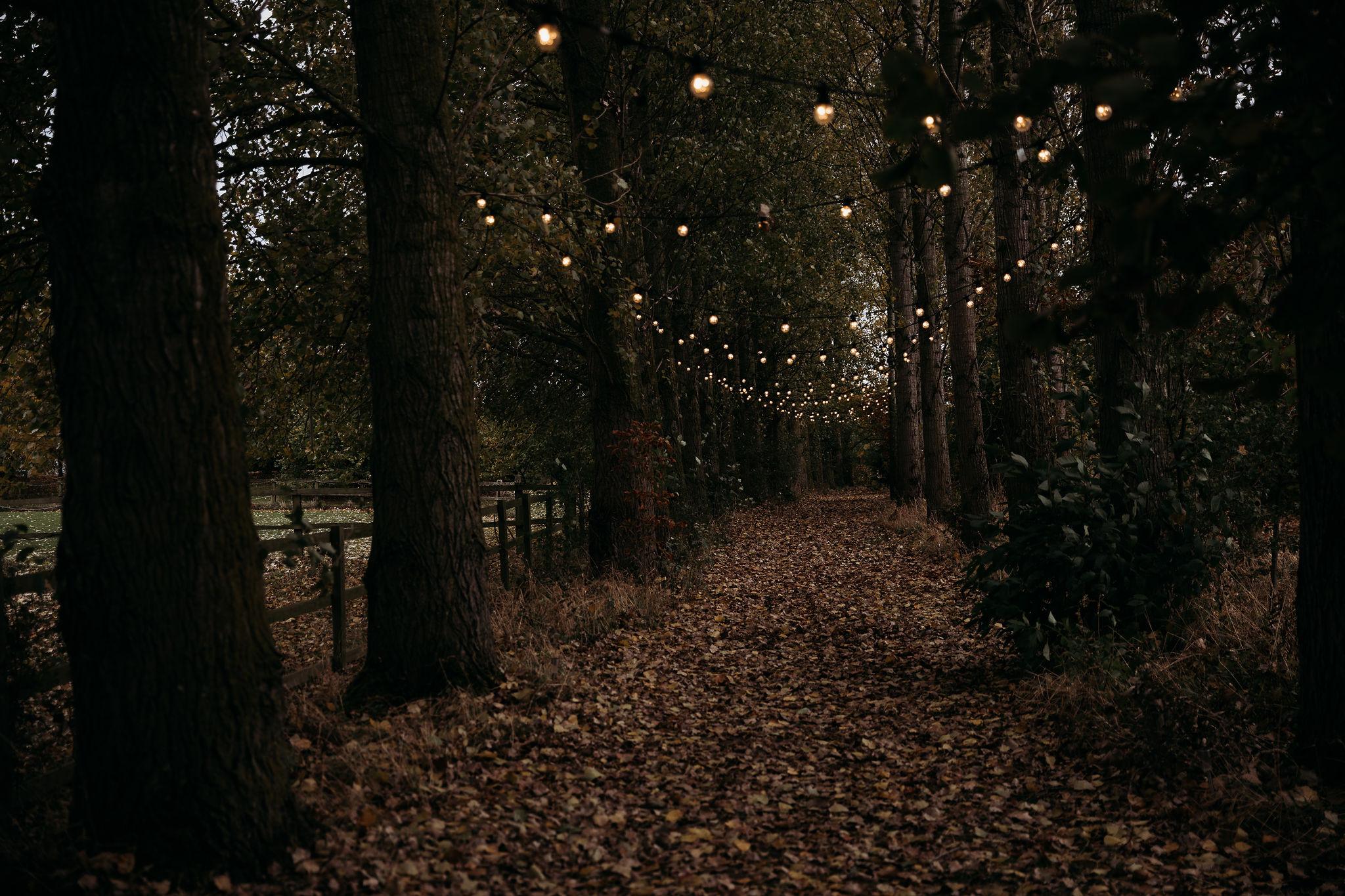 Festoon lit walkway