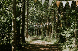 Avenue with bunting