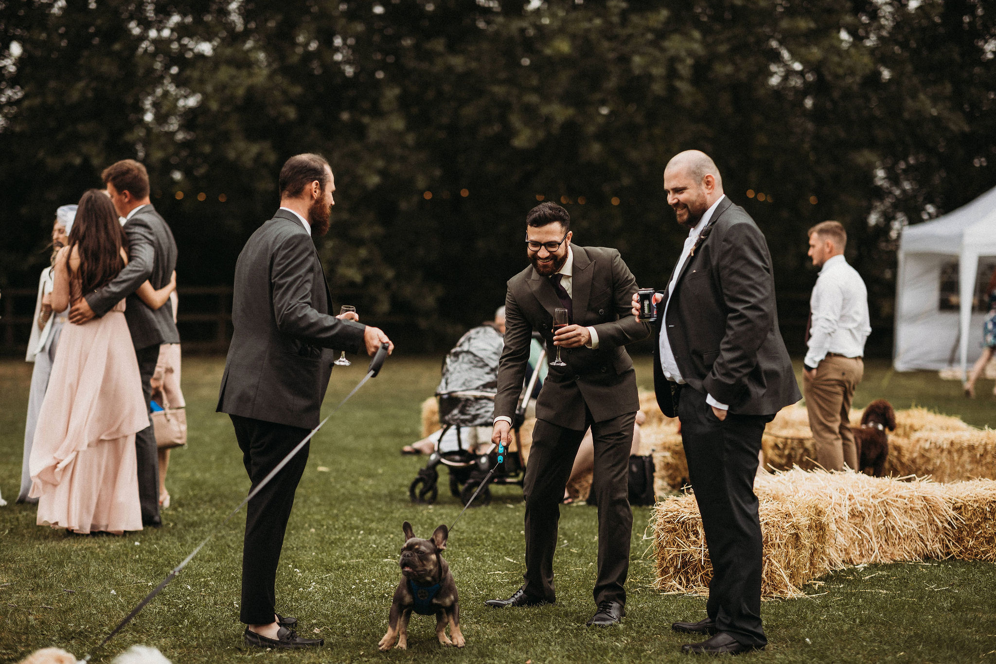 Dog friendly wedding