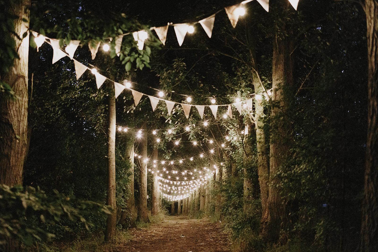 Festoon lit wedding walkway