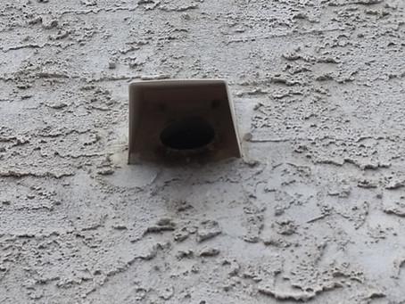 Birds don't belong in vents!