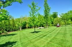 Pflege von Grünflächen