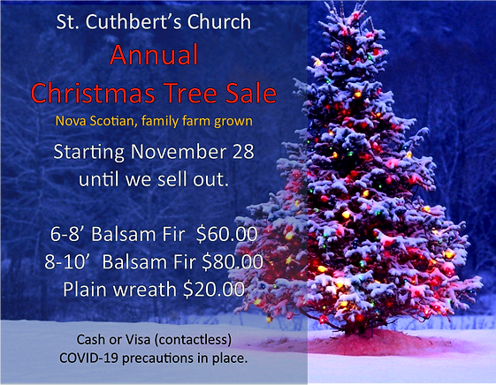 Christmas Trees 2020.png
