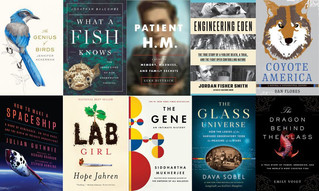 Pen America Announces Its Shortlist For America Literary Awards