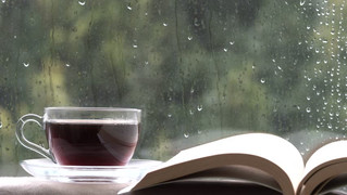 Top 5 Of New November Books For Rainy Weekends