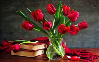 Top 5 February New Books To Read With Love After Valentine