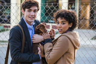 Catch Up With January Family, Comedy And Horror Movies