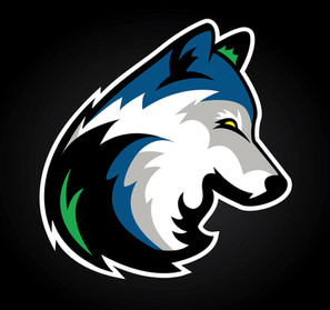 Timberwolves new logo 2.jpg